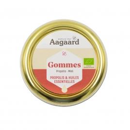 Gommes Miel Propolis 45 g